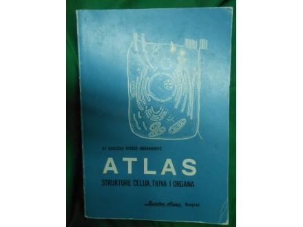 ATLAS strukture ćelija,tkiva i organa Nadežda Stošić-Bo