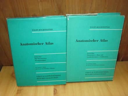 Anatomischer Atlas 2,3 Band 24 Auflage -Toldt-Hochstet