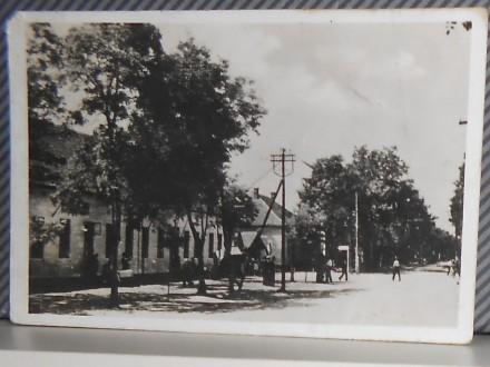 BAČKO PETROVO SELO-1940-1950    ( II-10 )