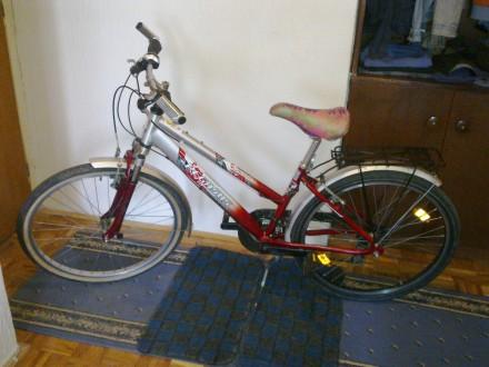 Bicikli Pegasus Milano,shimano-7 brzina