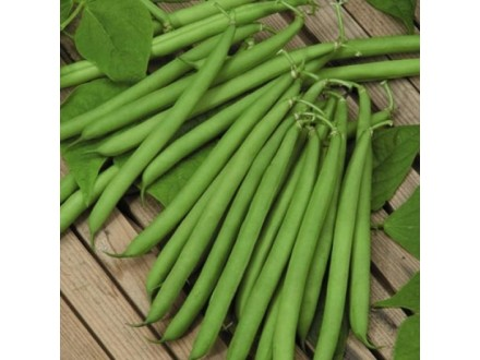 Boranija niska `Top Crop`, 50 semenki