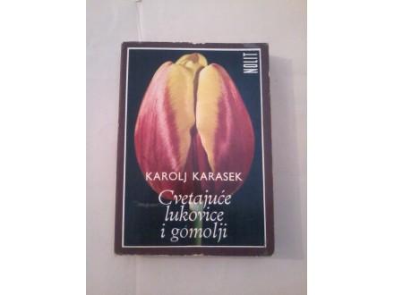 Cvetajuće lukovice i gomolji - Karolj Karasek
