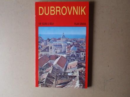 DUBROVNIK I OKOLICA - Povijest kultura umjetnost