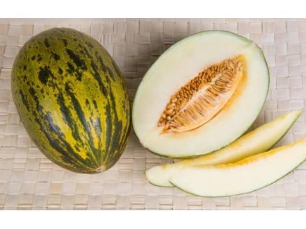 Dinja `Piel De Sapo`, 20 semenki