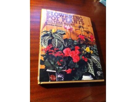 Flowering pot plants Gordon Procter