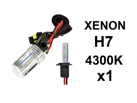 H7 XENON sijalica - 4300K - 35W - 1 komad