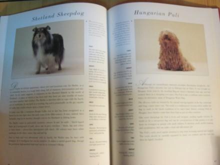 Hamlyun all colour guide to dogs