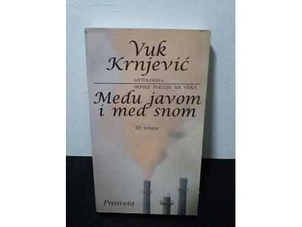 MEĐU JAVOM I MED SNOM antologija Vuk KRNJEVIĆ