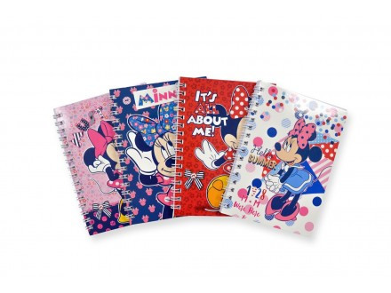 Minnie Mouse school notes 318200