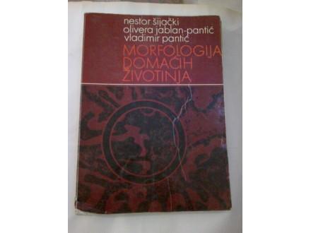 Morfologija domaćih životinja - Šijački Jablan-Pantić