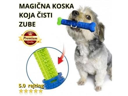 NOVO! Koska za čišćenje zuba psima