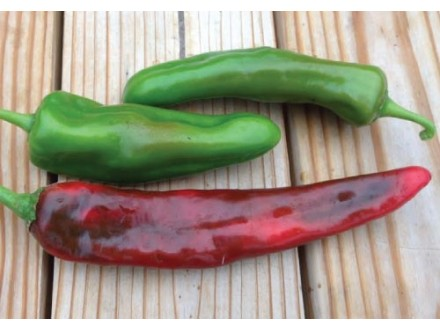 Paprika `Anaheim`, blago ljuta, 15 semenki