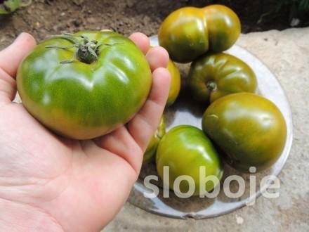 Paradajz Smaragdna jabuka, 0,15g (oko 35 semenki +/-)