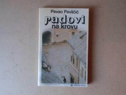 Pavao Pavličić - RADOVI NA KROVU