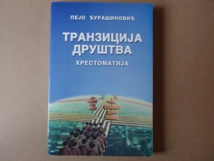 Pejo Đurašinović - Tranzicija društva Hrestomatija