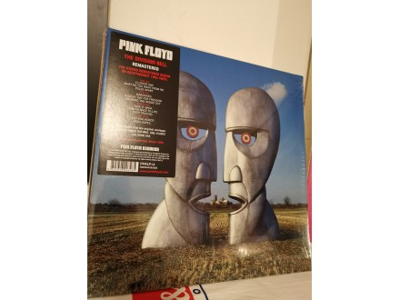 Pink Floyd- The Division Bell [Remastered VINYL]