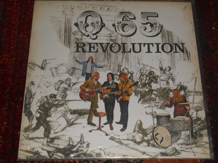 Q 65 - revolution MINT !!!