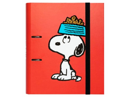 Registrator 2R - Snoopy, Premium