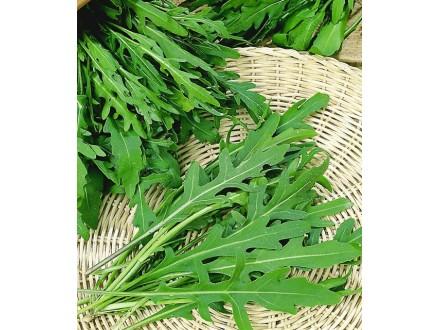 Rukola, pitoma (Eruca sativa), 3g (preko 1800 semenki)