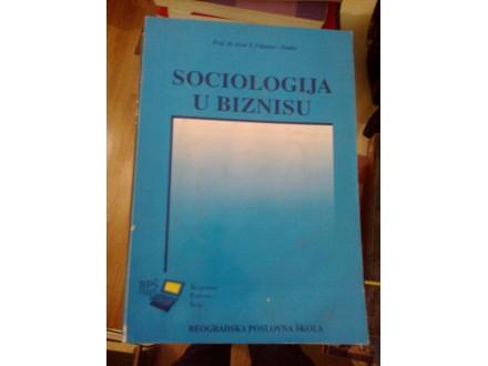 Sociologija u biznisu - prof dr Asen T. Videnov - Senko