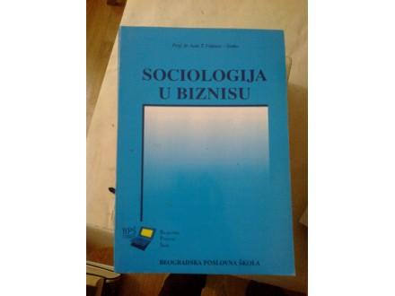 Sociologija u biznisu - prof dr Asen T. Videnov-Senko