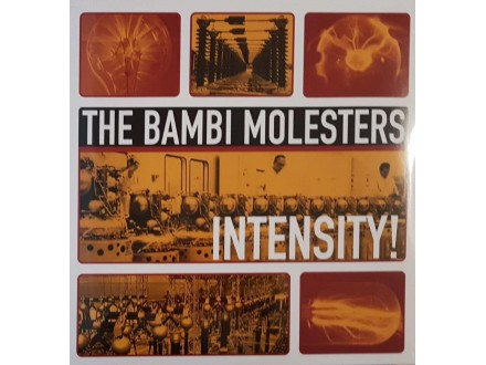THE BAMBI MOLESTERS - INTENSITY - LP