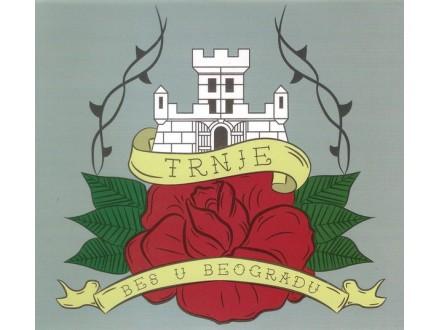 TRNJE - Bes u Beogradu