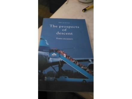 The prospects of descent - Felix van de Laar