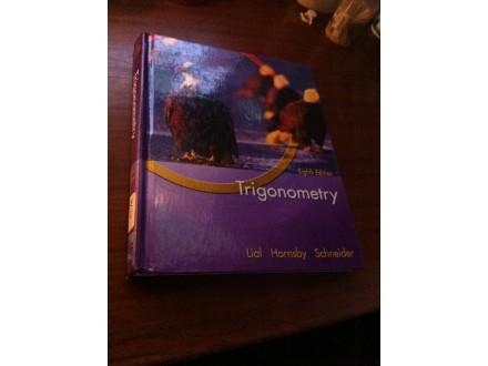 Trigomometry Lial Hornsby Schneider