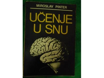 Učenje u snu  Miroelav Pinter