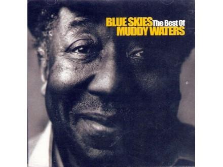 Waters, Muddy/Best Of -Blue Skies