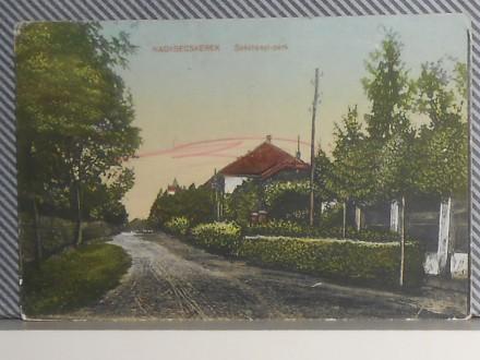 Z R E NJ A N I N -  SEČENJI-PARK 1910/20  (VI-31)