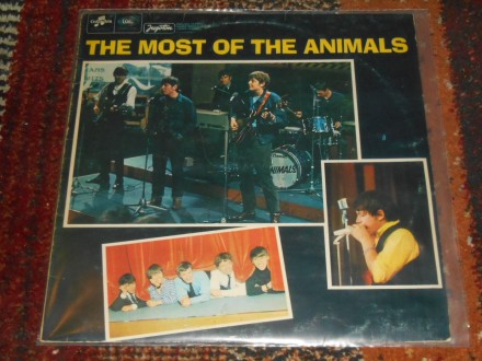 animals - most of the animals 5-/5