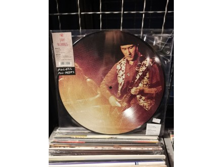 jah Wobble - Acces all areas
