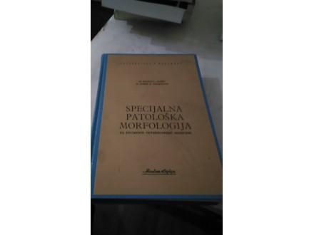 specijalna patoloska morfologija jaksic sofrenovic