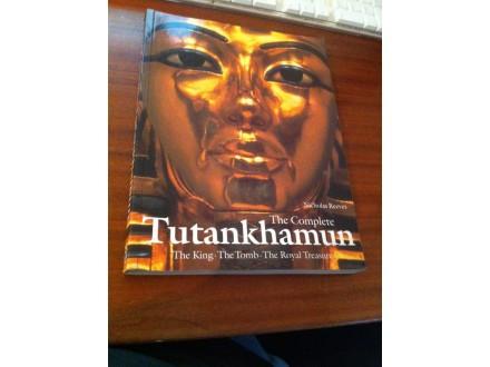tutankhamun nicholas reeves