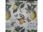 *S162--Salveta, limun/kom