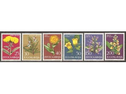 1965 - Flora