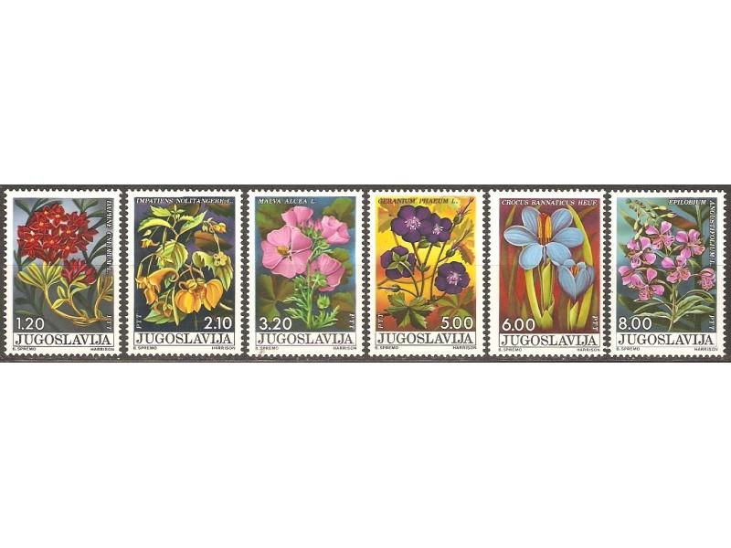 1975 - Flora