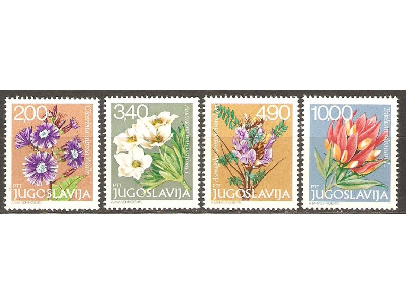 1979 - Flora