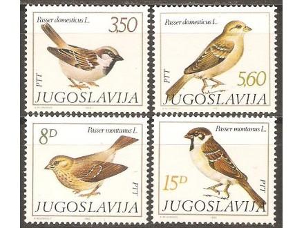 1982 - Fauna