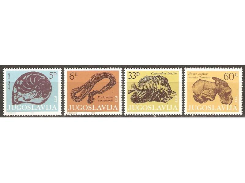 1985 - Fosili