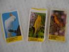 3 slicice sa pticama iz zvaka devedesete Ex YU