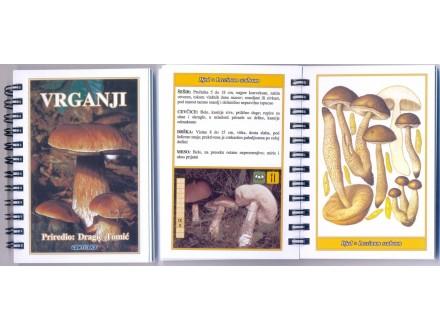 5. Brošura, GLJIVE, LEKO-BILJE,