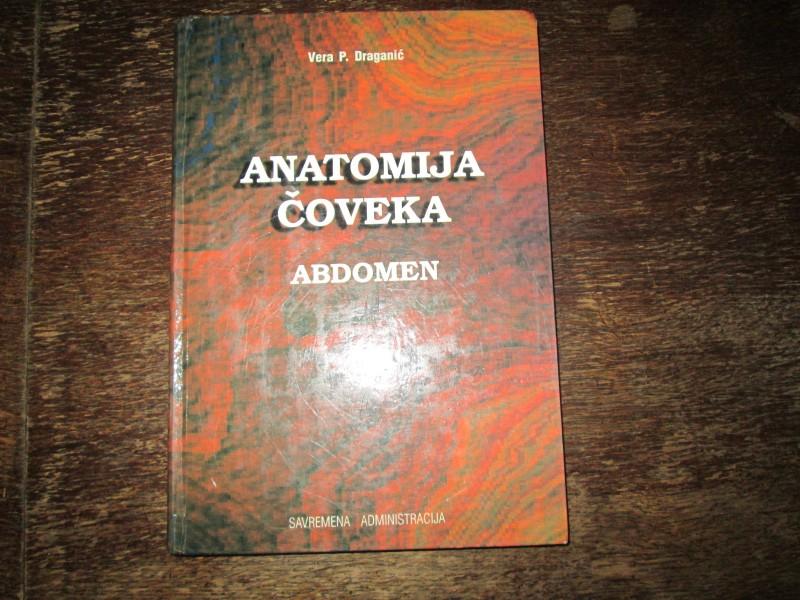 ANATOMIJA ČOVEKA - abdomen - Dr Vera Draganić