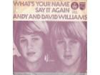 ANDY & DAVID WILLIAMS - Say It Again