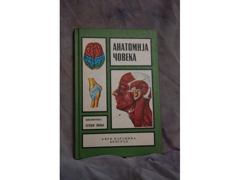Anatomija Coveka