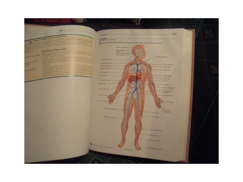 Anatomija i fiziologija na engleskom, G.Tortora i