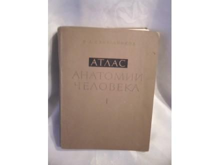 Anatomski atlas, I, kosti, Sineljnikov
