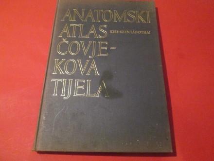 Anatomski atlas čovjekova tijela,II Kiss - Szentagothai